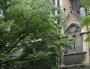 Le Diocèse de Lyon révèle des plaintes contre un prêtre présumé pédophile