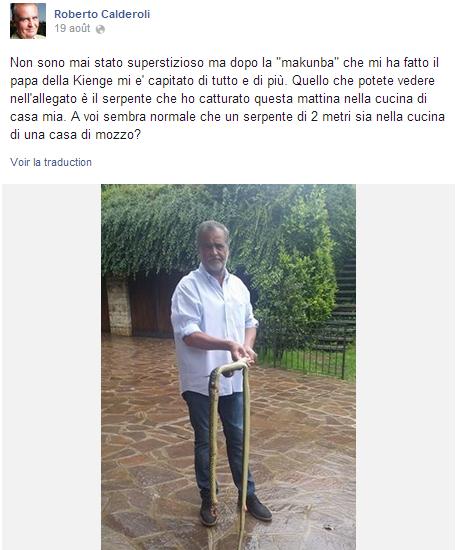 Page Facebook de Calderoli, capture d'écran.