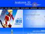 Capture d'écran MOOC Lyon 1, Anatomie 3D