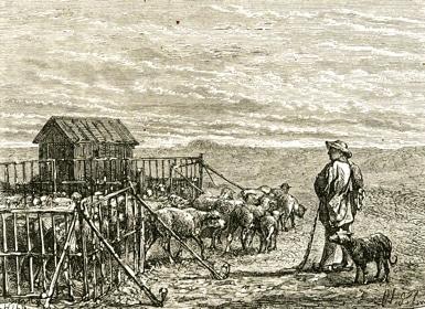 L'enclos de regroupement nocture, une pratique ancienne. Crédit : Buvette des Alpages.