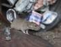 Près d'un million de rats dans le Grand Lyon