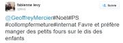 Twitt de Fabienne Lévy pendant le conseil municipal.