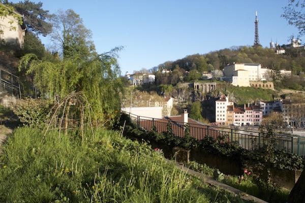 Le jardin partagé de la Muette sur les Pentes de la Croix-Rousse ©Eva Thiébaud/Rue89Lyon