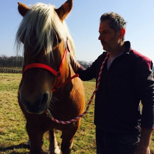 bauchet-cheval