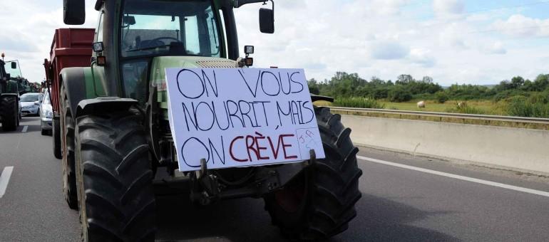 Nouvelles actions des agriculteurs dans le Lyonnais et la Loire