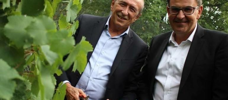 Adoubé par Gérard Collomb, David Kimelfeld se voit-il déjà dans le fauteuil du maire de Lyon?