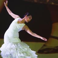 Ballet Flamenco d'Andalousie