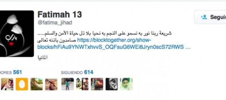 Comment l'Etat islamique se joue de Twitter