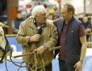 Gérard Depardieu (le père) et Benoît Poelvoorde (le fils) dans Saint-Amour