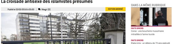 Capture d'écran leprogres.fr
