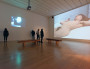 Musée d'art contemporain de Lyon : qui pour prendre la direction ?