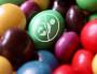 Le «Pass contraception» va-t-il être supprimé par Laurent Wauquiez ?