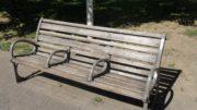 Arceaux sur un banc de la place Carnot à Lyon 2e