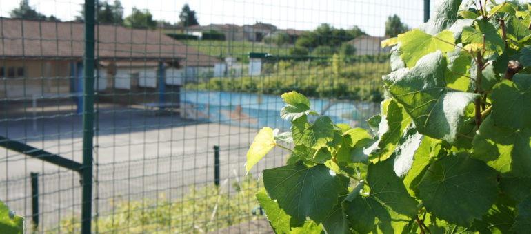 Pesticides : les riverains des zones agricoles encore sacrifiés dans le Rhône