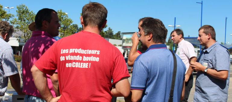 Les éleveurs bovins appellent à boycotter Carrefour : «Achetez votre viande ailleurs!»