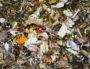 Plongée dans les poubelles grenobloises (1/3) : « Tout le système est à revoir »