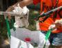 Photo prise lors d'une collecte de We Waste.