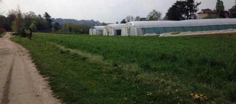 A Lyon, une agriculture aux portes de la ville est-elle possible ?
