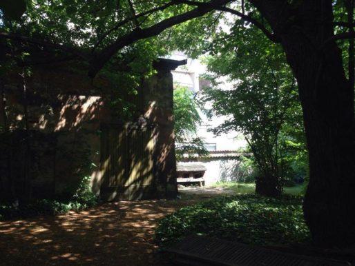 Parc de la villa Monoyer composé d'arbres imposants, dans le 3ème arr. de Lyon
