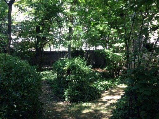 Le bain de verdure dans le parc de la villa Monoyer, dans le 3ème arr. de Lyon