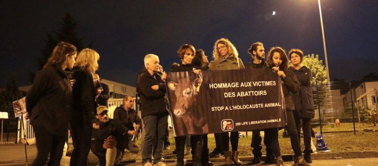 [Vidéo] Pour l'association «269Life libération animale», la désobéissance civile est-elle une stratégie payante ?