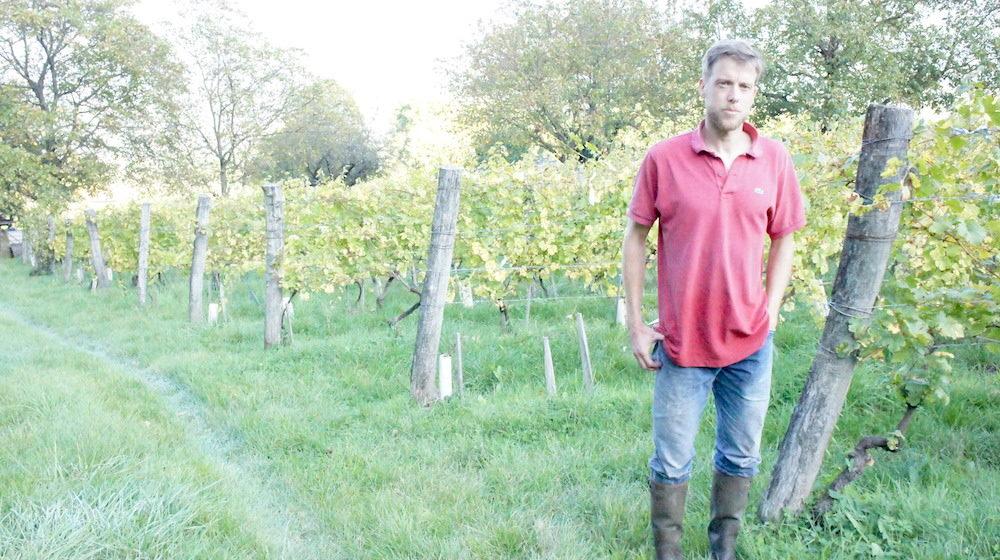 Laurent Fondimare du Domaine des Rutissons, devant des vignes de verdesse palissées à 1,85 m. ©LB/Rue89Lyon
