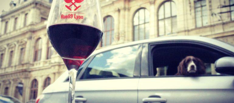 5 raisons de venir au salon des vins «Sous les pavés la vigne» à Lyon