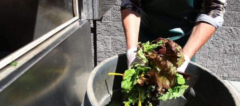 Gestion des biodéchets sur les marchés alimentaires : Lyon en dehors des clous