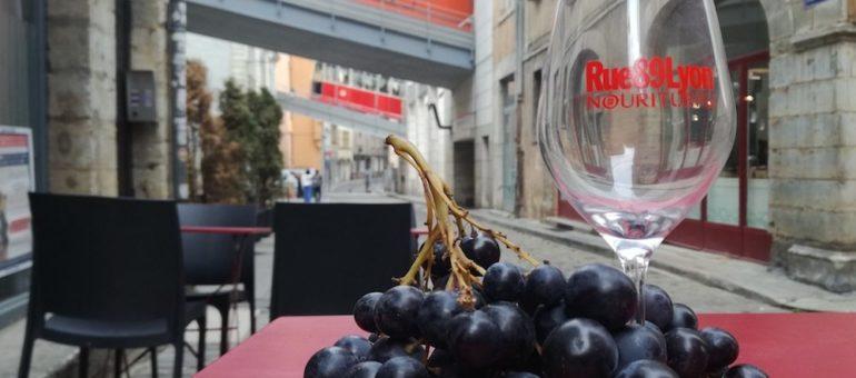 «Pour les bobos» ou «trop cher», démontons les clichés sur le vin naturel