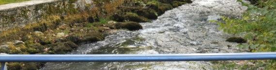 Au bord des canaux qui traversent Divonne, des panneaux invitent à « protéger les rivières ». Crédit Alexis Demoment / Rue89Lyon.