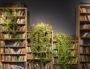 Des plantes et une bibliothèque ©Paweł Czerwiński