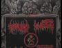 L'affiche du concert de black metal néonazi (NSBM) Call of terror III dans la région lyonnaise le 9 février 2019