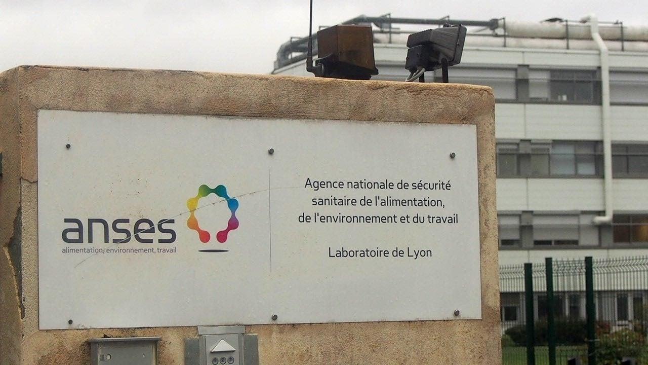 L'Anses dispose de neuf laboratoires, dont un à Lyon, avenue Tony Garnier (7e). ©Camille Rouet
