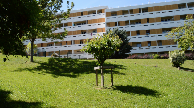 Des immeubles du quartier du Vergoin en mai 2019, à Lyon 9e.