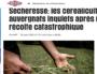 Sécheresse: bientôt la fin de l'agriculture en Auvergne ?