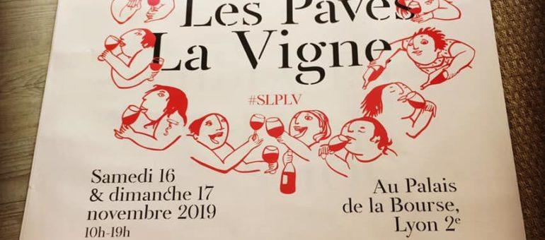 Le salon des vins naturels de Lyon déboule les 16 et 17 novembre 🍇