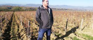 Vin naturel : une autre histoire du Beaujolais