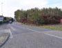 La friche boisée avenue Marcel Cachin qui doit acceuillir le pétanquodrome de Vaulx-en-Velin. ©HP/Rue89Lyon