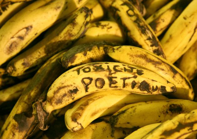 Jean-François Boclé, The Tears of Bananaman, 2009-2012, installation, container de marchandise, écrits de l'artiste scarifiés sur les bananes, socle en bois (330x130x25cm), diaporama vidéo, Périféeriques 3, Place Toussaint Louverture, Jacmel, Haïti, 2013 ©Jean-François Boclé /Adagp.