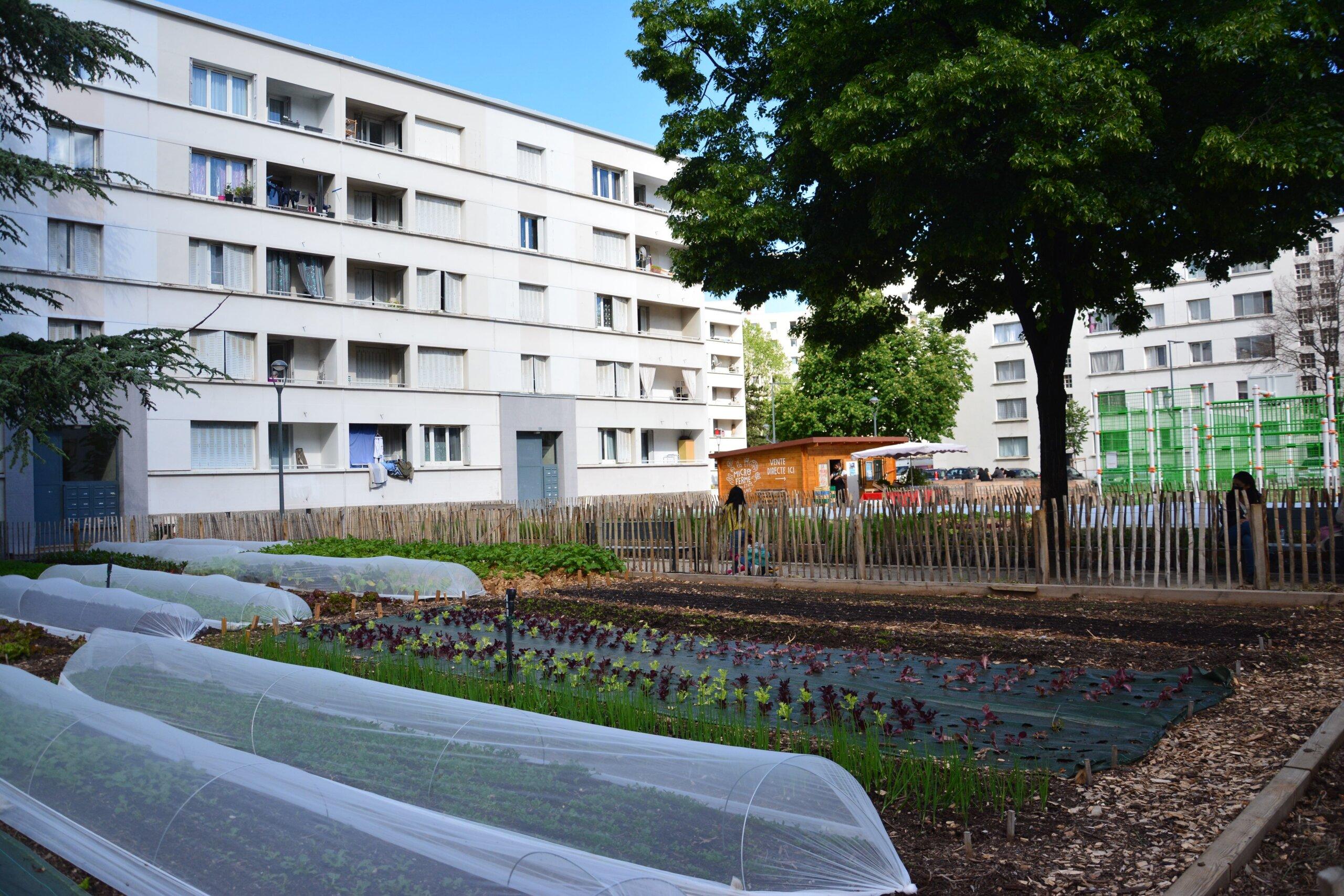 Politique agricole Lyon ferme urbaine
