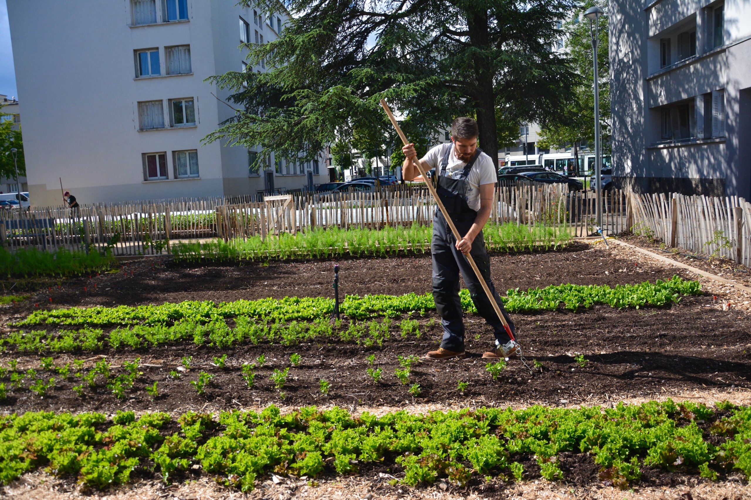 ferme urbaine Lyon Nicolas Gauthier au travail