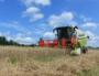 La récolte des collectifs paysans