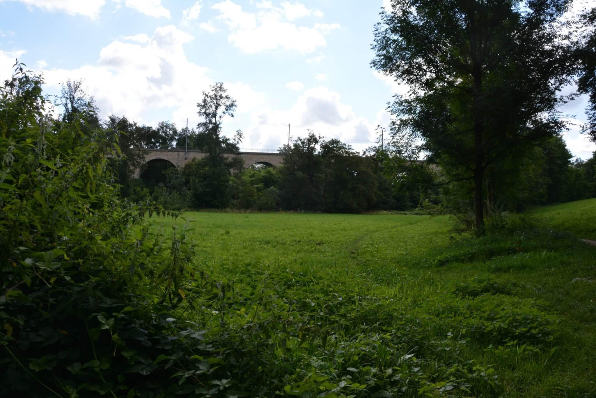 Le champ où sera installé le barrage de Francheville.