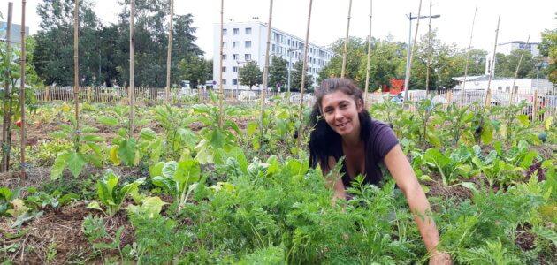 Ferme urbaine à Lyon-Duchère : «Les habitants pensaient que le potager ne leur était pas destiné»